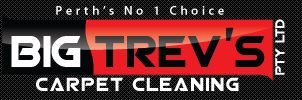 BIG TREV'S CARPET CLEANING